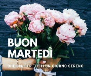 Immagini Buongiorno Le Piu Belle E Divertenti Immagini