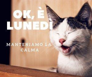 lunedì calma